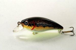Akuna [BP 54] 7,4cm Bass Leurre de pêche Crankbait, cinq d'une couleur, holographique Dirty basses