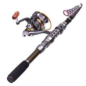 Cannes à pêche professionnelles et moulinets réglés canne à pêche télescopique avec des ensembles de bobine Rebo