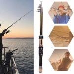 Canne à Pêche Télescopique, Canne à Pêche en Carbone Protable, Ultra-Courte, Mini-Canne à Pêche en Mer(1.3m)
