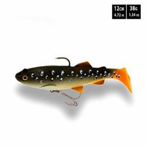 FISHN Pike TROUTY 12 cm, 38 g, leurre Souple, amorce Souple avec Crochet pour tête de gabarit et Agrafe triptyque et Barre de Son/Support Amovible – appâts pour la pêche au brochet (Real Trout)