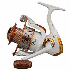 LOYFUN Reel Spinning Durable, Spinning Fishing Reel 12 + 1 Bearings Left Right Manche Interchangeable for Eau de mer Douce avec système de Frein à Double Friction (Size : 3000)