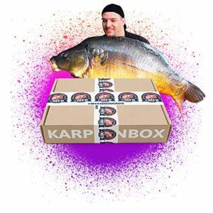 MyFishingBox Kit pour la pêche à la carpe, pour une pêche ciblée de carpe commune ou de la carpe miroir dans une boîte surprise, les leurres les plus efficaces pour les «cochons d'eau»