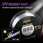 SeaKnight T2 fluorocarbone Peche Carpe Ligne de Guidage Invisible de Fluo Fil de Pêche 100m/110yds