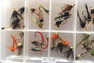 BestCity Mouche de Pêche – Tête de Nymphe – Sélection de 32 mouches pour la pêche à la truite – fourni avec une boite à clip # 341