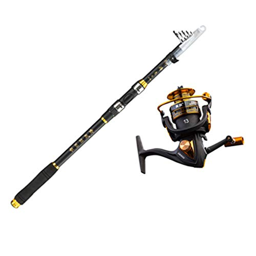 Canne à pêche télescopique portable en fibre de carbone pour pêche en eau salée et eau douce, couleur, 3m