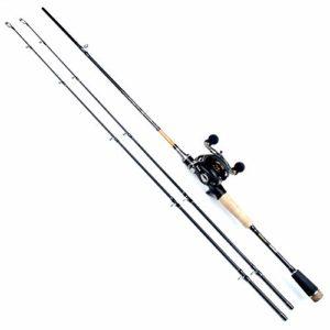 MXMYFZ Lure Canne à pêche, poignée Droite/Type de Pistolet en Fibre de Carbone télescopique Rotatif Canne à pêche Rouet Kit, Convient Pêche extérieure,Gun Type (Left Hand),2.4m