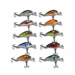 outlife 10pcs Kit Leurre de Pêche 3D Appât en ABS avec Boîte pour Pêcher 47MM 4G Multicolore (crank)