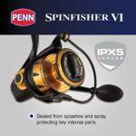 Penn SPINFISHER VI Live Liner