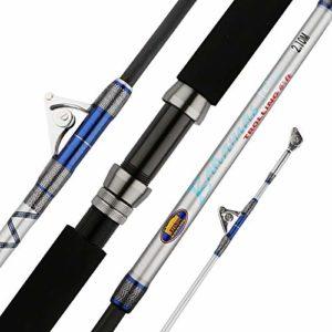 Wujiancheng Canne à pêche Pêche rétractable Super Hard Rod Carbon Portable Canne à pêche Robuste for la Navigation Maritime Pêche au Gros Poisson de pêche bâton À être des Cadeaux de pêche