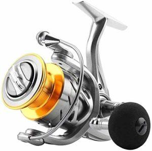 BZLLW Reel pêche, processus Bas Torq Baitcasting Reel, Le Nombre de Quantification Cup en Aluminium Conductors, 4,7/6,2 birapport, Choix Multiples (Color : 5000)