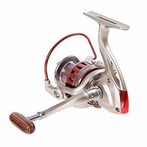 Moulinet de pêche Moulinet de pêche Tout métal Rock DF2000-DF5000 10BB 5.5: 1 moulinets de pêche en Rotation Roue de pêche-DF1000 Uptodate