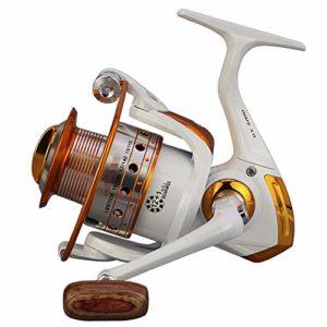 WyaengHai Moulinet de pêche en mer pour pêche en mer 500-9000 Moulinet de pêche interchangeable gauche/droite (couleur : blanc, taille : BX8000)