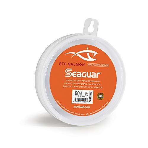 Seaguar STS Leader du Saumon fluorocarbone Ligne de pêche, 40STS100, Claire, 40-Pound/100-Yard